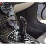 bugatti-veyron-mansory-linea-vivere-for-sale-6